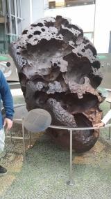 La météorite Willamette
